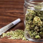 Marijuana Prosecution Declines in Denton