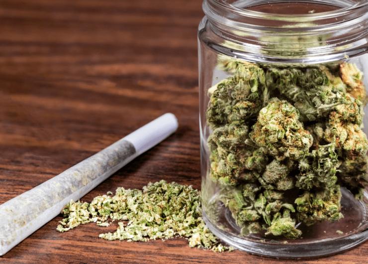 5fcfc97b2d91370993971287_Declines-in-Marijuana-Prosecution-in-Denton
